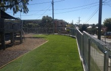 New grass and fencing